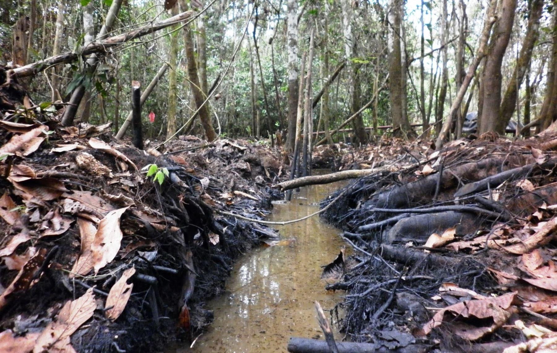 IDL invoca a OEFA celeridad en caso por derrame de petróleo en Amazonas y Loreto para evitar nuevo archivamiento