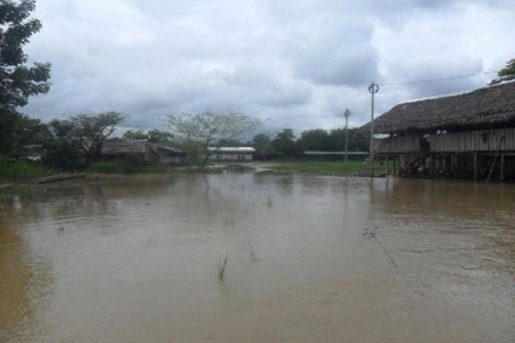 IDL presenta video sobre las amenazas del Proyecto Hidrovía Amazónica