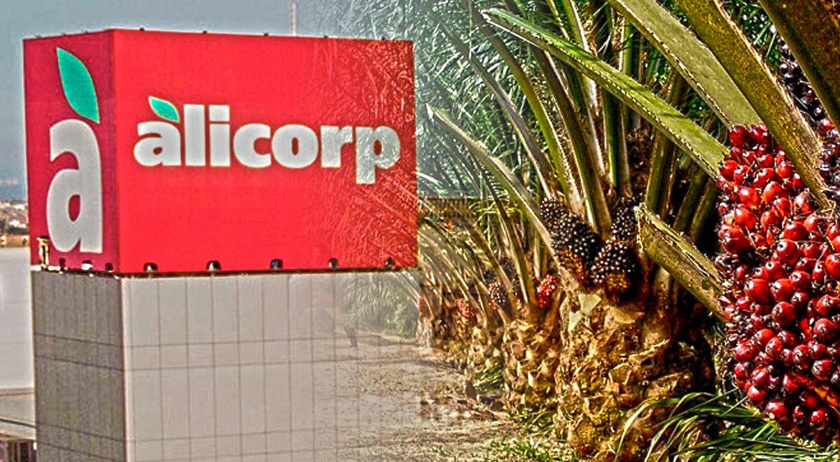 Alicorp: Banco noruego retira inversiones a empresa por escándalo de palma aceitera (La República)