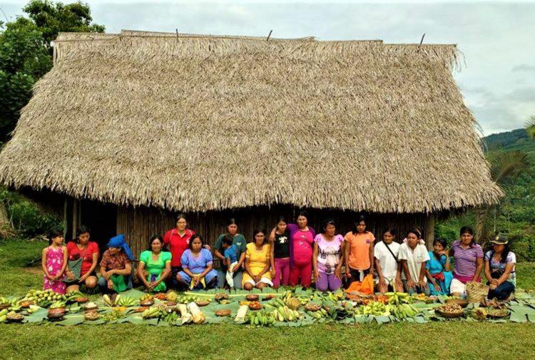 Qué debe hacer de inmediato el Gobierno para proteger a los pueblos indígenas del COVID-19