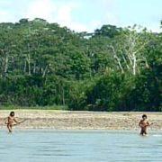 Pueblos en aislamiento en peligro de contagio por reactivación de concesiones forestales en sus territorios