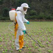 TC se pronuncia contra el uso de plaguicidas tóxicos en la agricultura