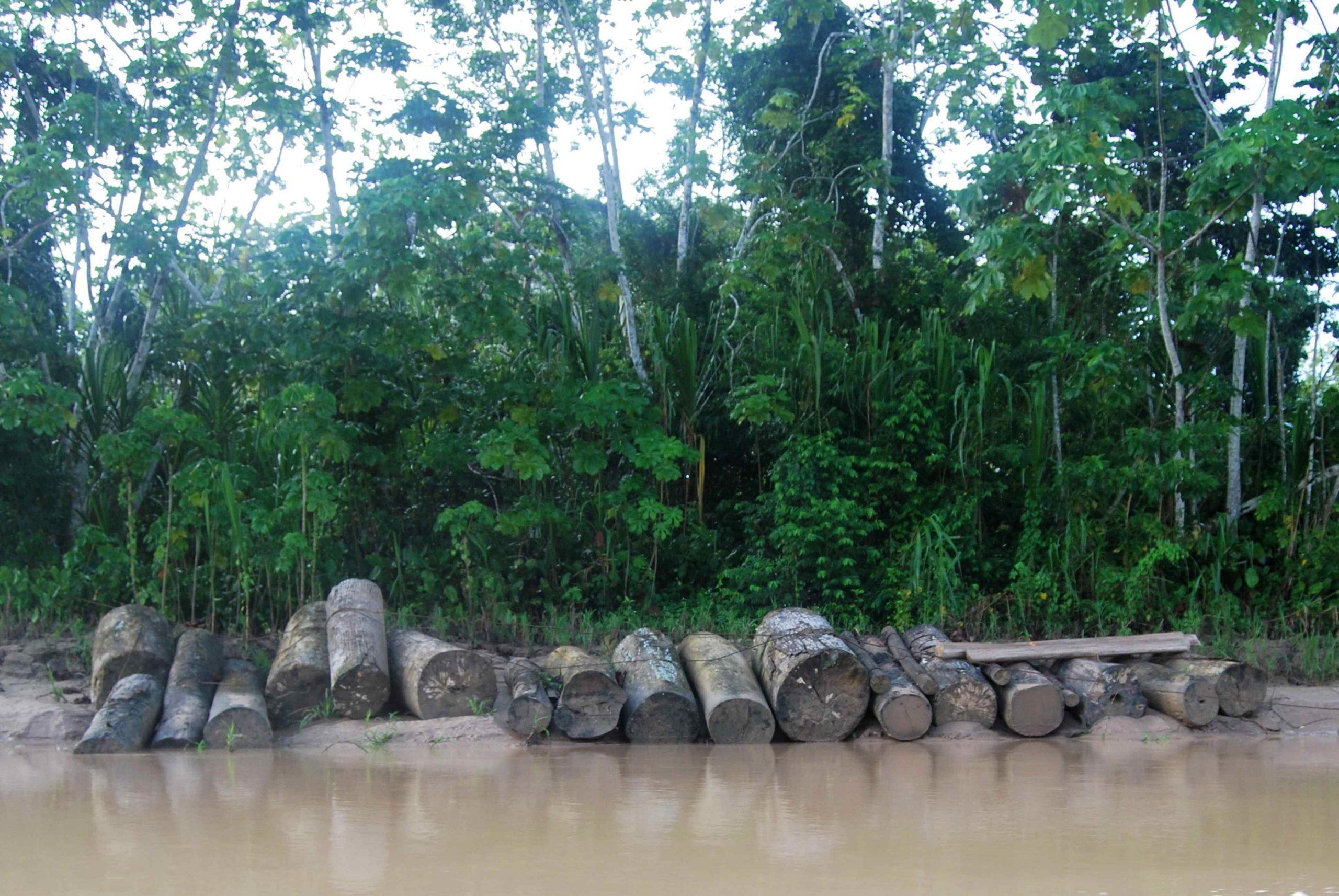 Temor en Perú por la vuelta de madereros a tierras de indígenas aislados